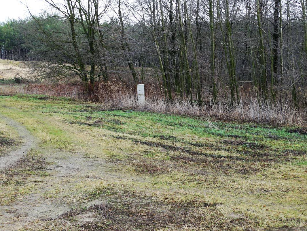działki budowlane po 3000 m/2   w  Nasiegniewie gm. Fabianki